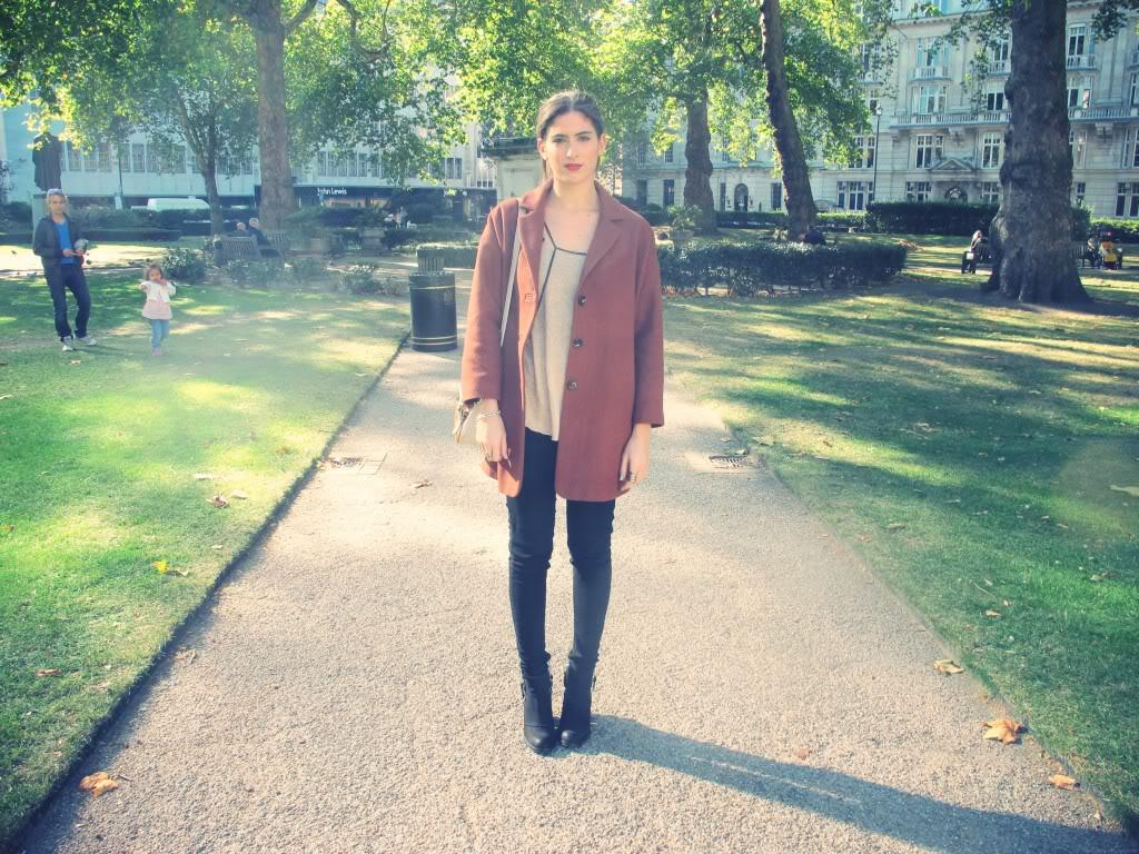 Rust Coat Lily Pebbles