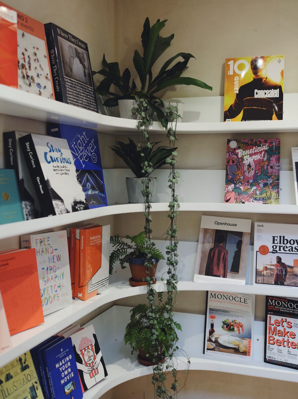 FOUR HOURS IN BRIGHTON – Lily Pebbles